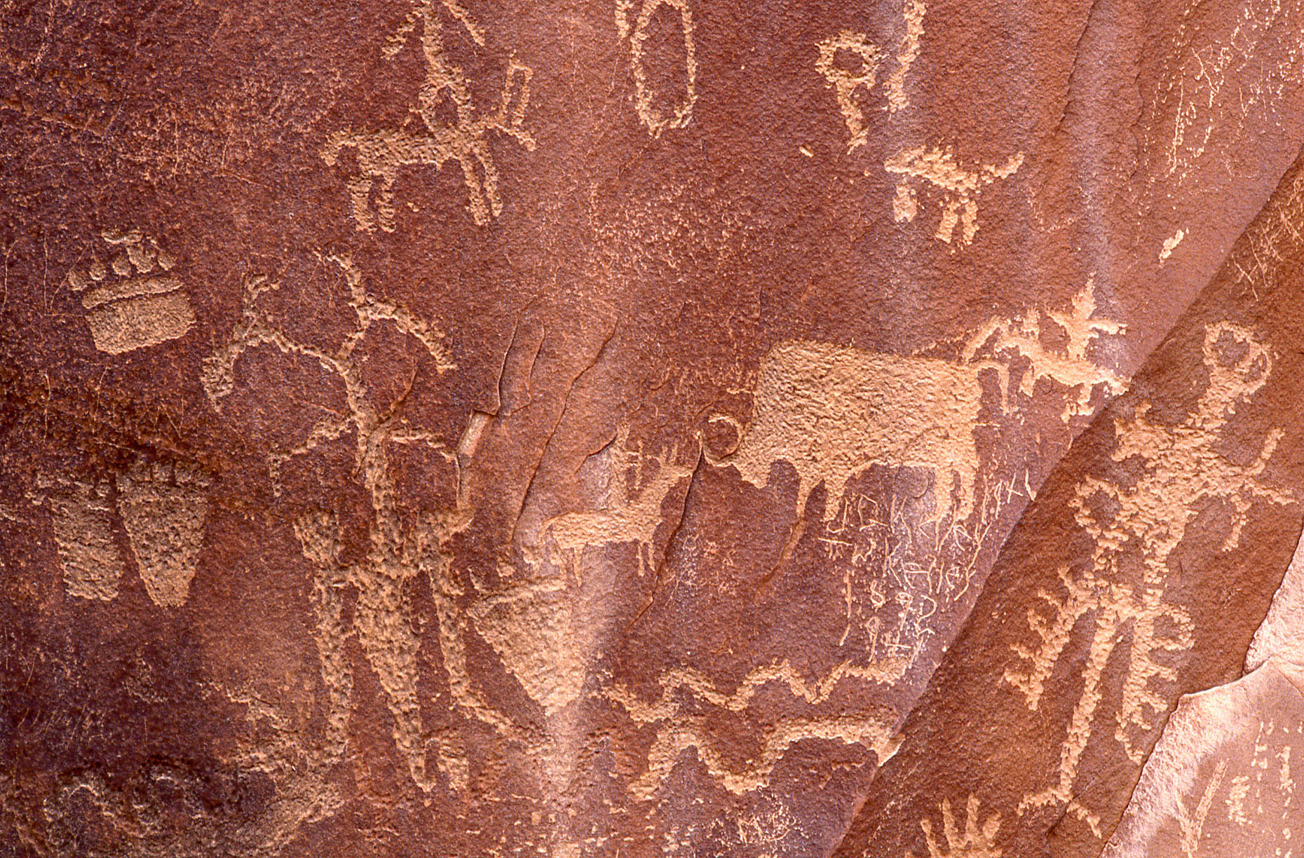Petroglyphs, John Annerino, Newspaper Rock State Historic Monument, UT